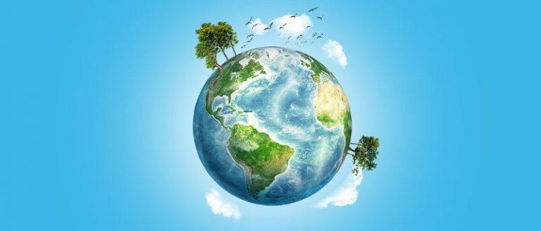 Le strategie per prendersi cura dell'ambiente