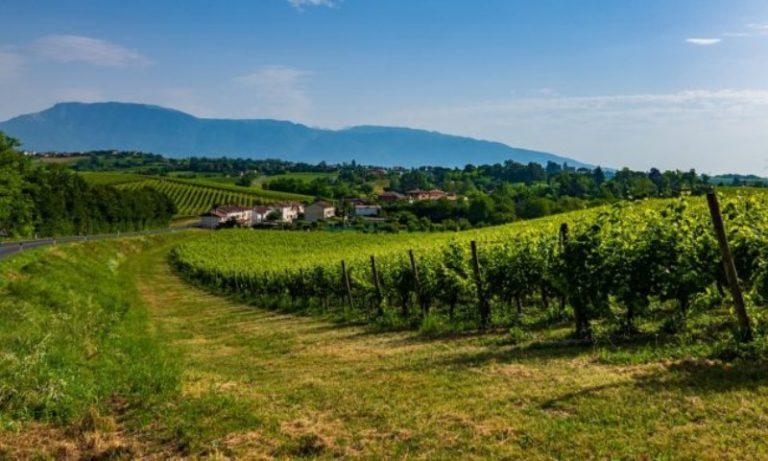 Le colline del Prosecco ed i loro gioielli: cosa vedere
